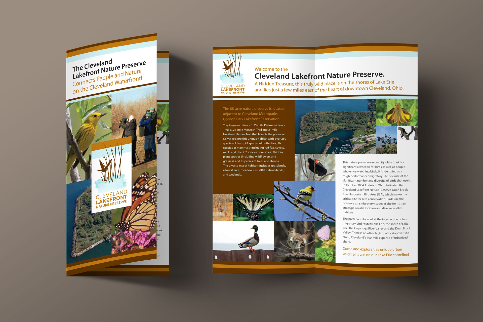 Krizman brochure design
